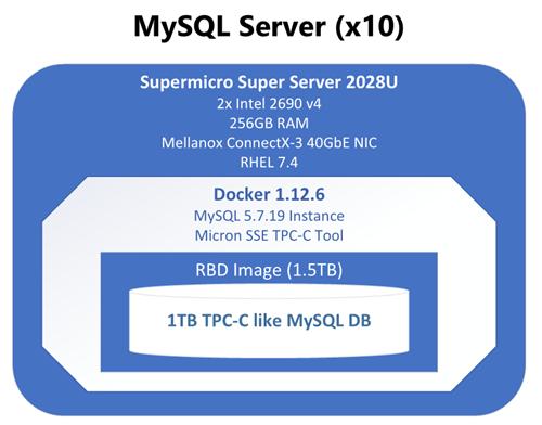 MySQL Server (x10)